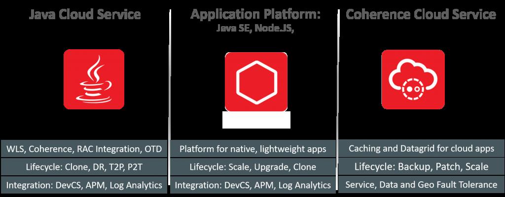 PaaS Cloud - Application Development